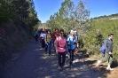 Caminada al Castell de Mediona