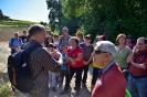 Descoberta de la a natura a al Torrent de Romaní (Puuigdàlber)