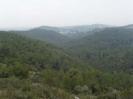Parc del Foix_5