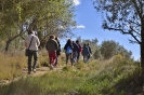 Caminada Pacs_2