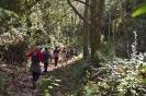 IV Caminada solidària en benefici de la Marató de TV3 2017