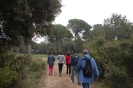 Plana del Baix Penedès